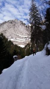 Aufstieg mit Blick auf die Schafbergwand