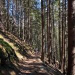 Trail nach Intschi