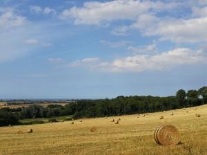 Typische Landschaft der Normandie