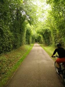 Aif der Route de Cidre..wieder vereint